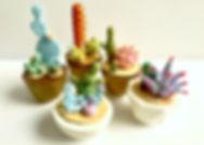 cacti copy.jpg
