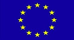 Euro flag.jpg