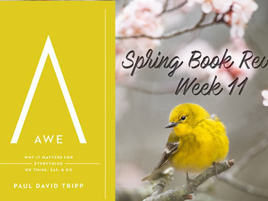 Chapter 11 of AWE: Why It Matters for Everything We Think, Say, & Do by Paul David Tripp