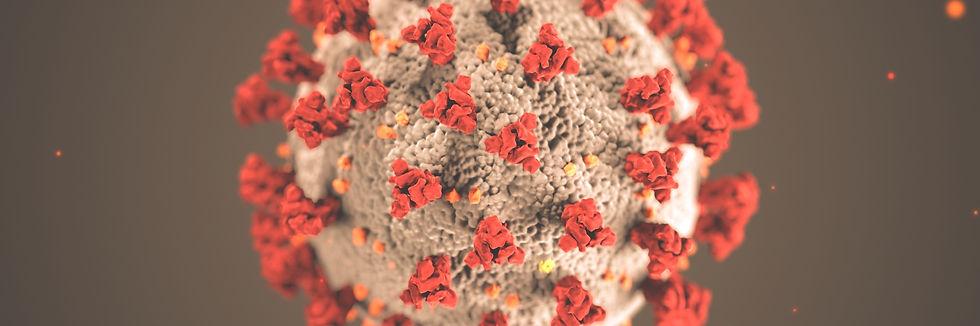 coronavirus-2871-2560x852_edited.jpg