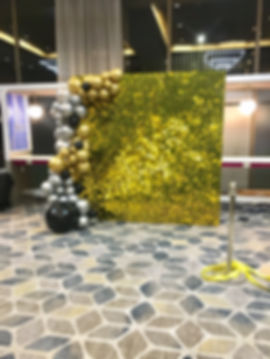 Shimmer Walls Dallas, air activated shimmer walls, air active sequin walls Dallas