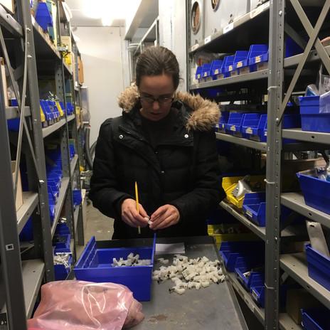 Amanda G. Counting Inventory at Brubaker