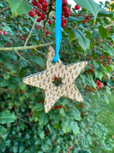 Ceramic Star w/Hole Ornament