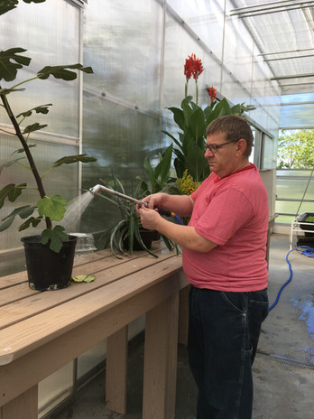 Dale L at Greenhouse watering plants.JPG