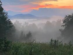 Cassidy_Margaret M_Fog at Sunset_Photogr