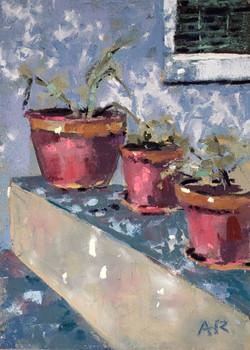 Reid, Anne-Pots
