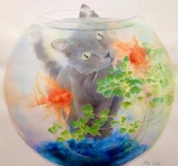 Mesmerized (goldfish bowl)