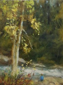 Garity, Jill-Contemplating Jackson Falls