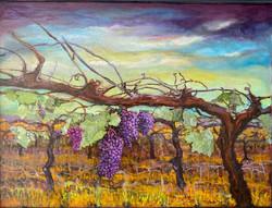 Gardiner, Maribe-Hanging on the Vine