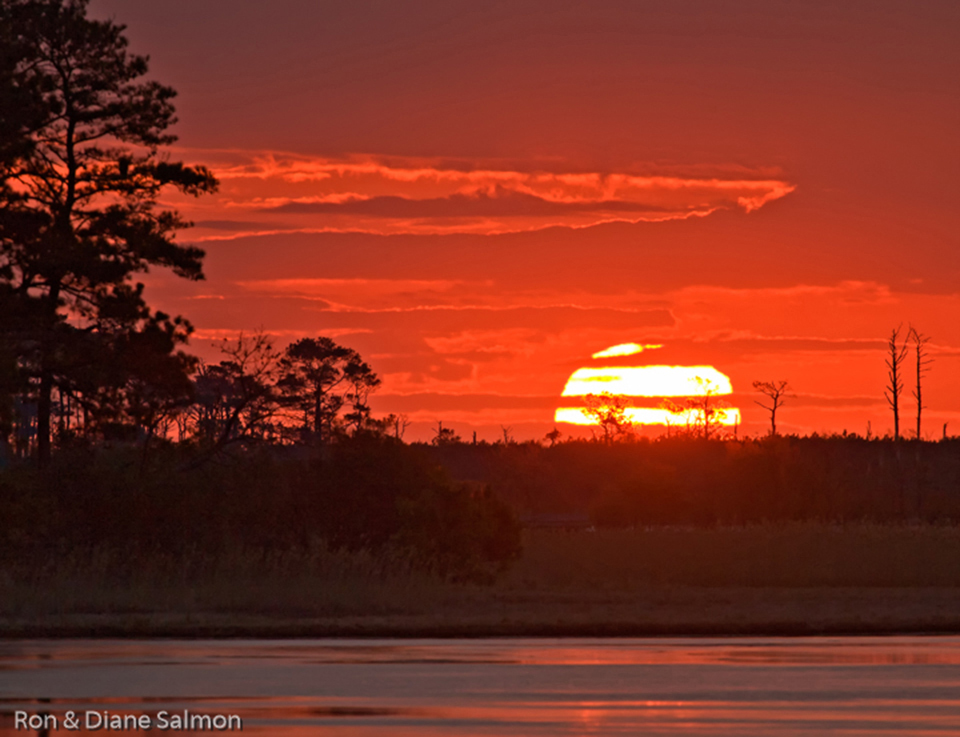 Big Chincoteague Sun