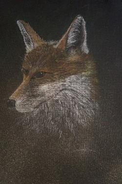 Patterson, Leslie-Profile of a Fox