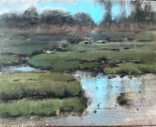 Clinton, Sharon-Salt Marsh