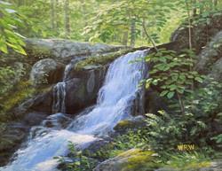 Walsh, WIlliam-Waterfall