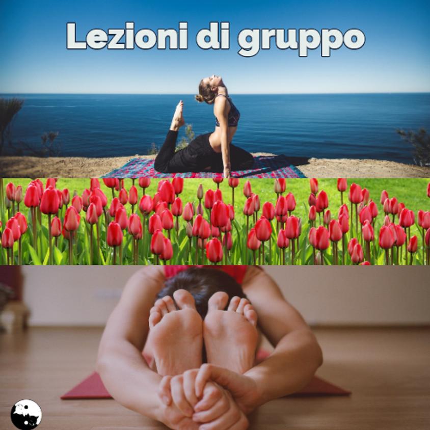 Lezioni di gruppo di Yoga, Yamuna Body Rolling e Qi Gong. Esercizi di lunga vita.
