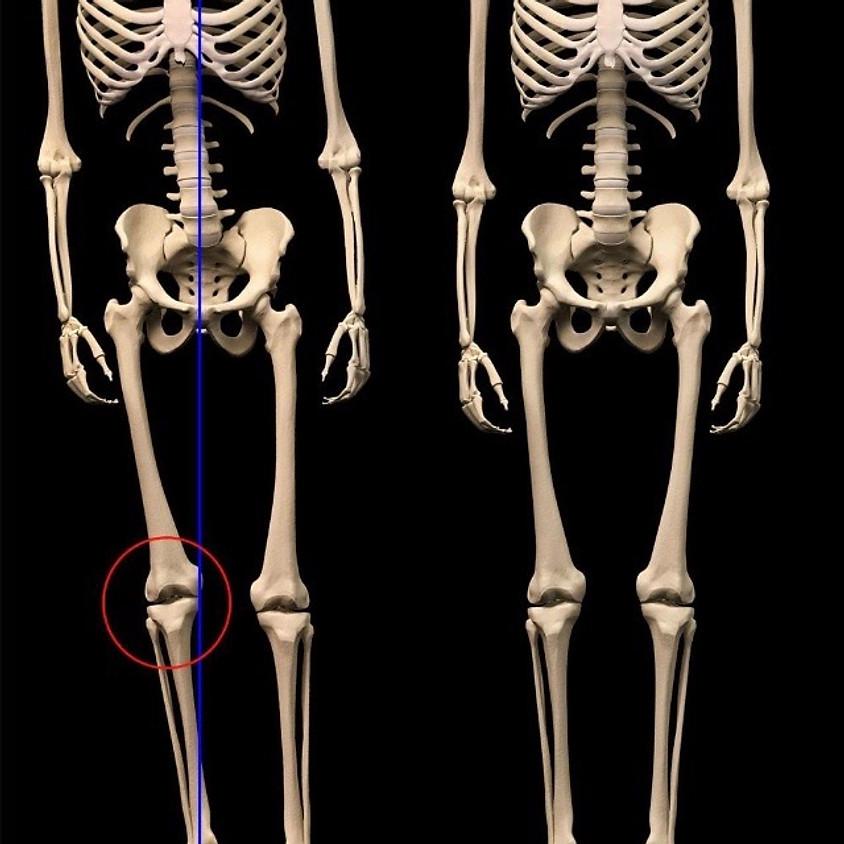 Allineamento divino - allineamento vertebrale