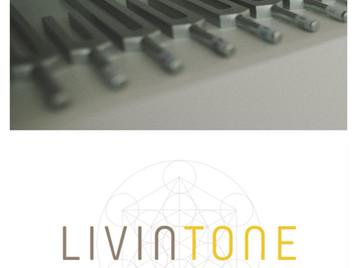 Die Welt von LIVINTONE - Podcast Interview mit Sandra Agerer