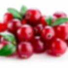 cranberry.webp