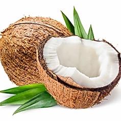 coconut.webp