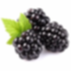 blackberry.webp