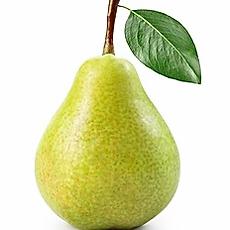 pear.webp