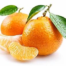 tangerine.webp