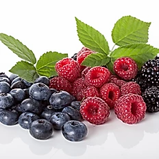 wildberry.webp