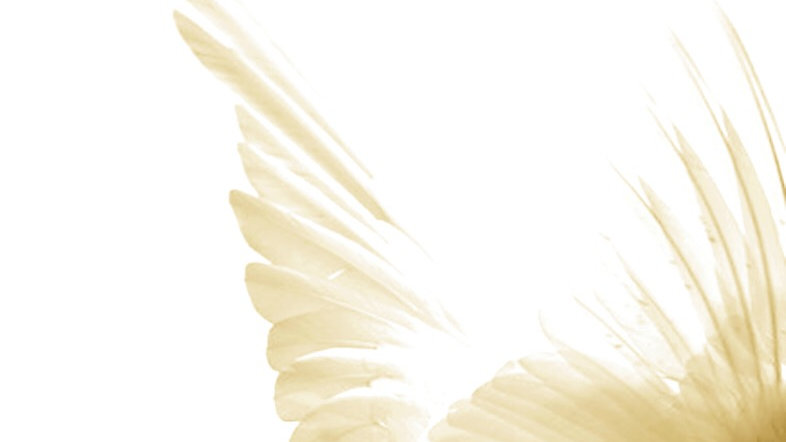 PEACE GUIDED MEDITATION