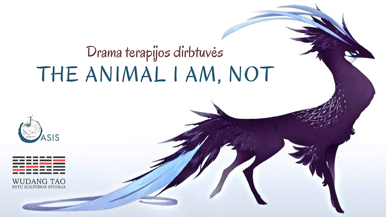 Drama therapy session - The Animal I am, not