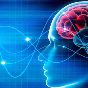 Neuroplasticity and all things rehab