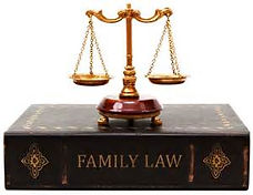 Divorce & Family Law Book