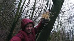 Réservoirs à nids
