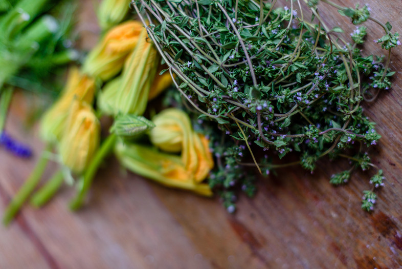 Squash Blossoms & Thyme