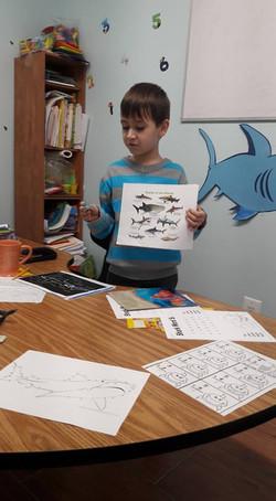 English language - presentation about the sea animals