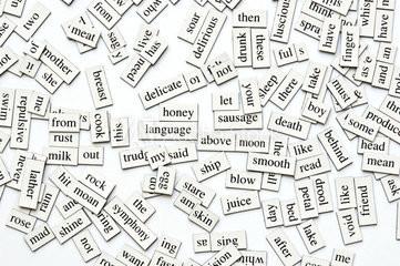 ESL Poetry Magnets