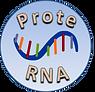 ProteRNA logo.png