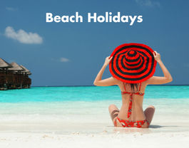 Beach Holidays website Link.jpg
