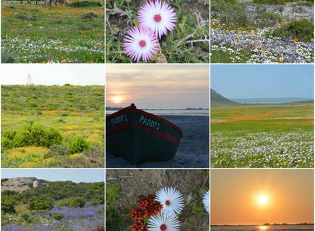 "#Roadtrip - Three ""Bucket-List"" self-drive trips I've taken in Namibia & South Africa."