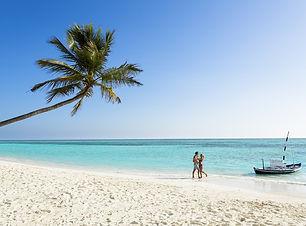 Maldives Meeru.jpg