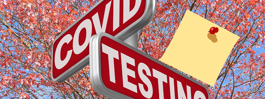 Covid Testing Options website banner.png
