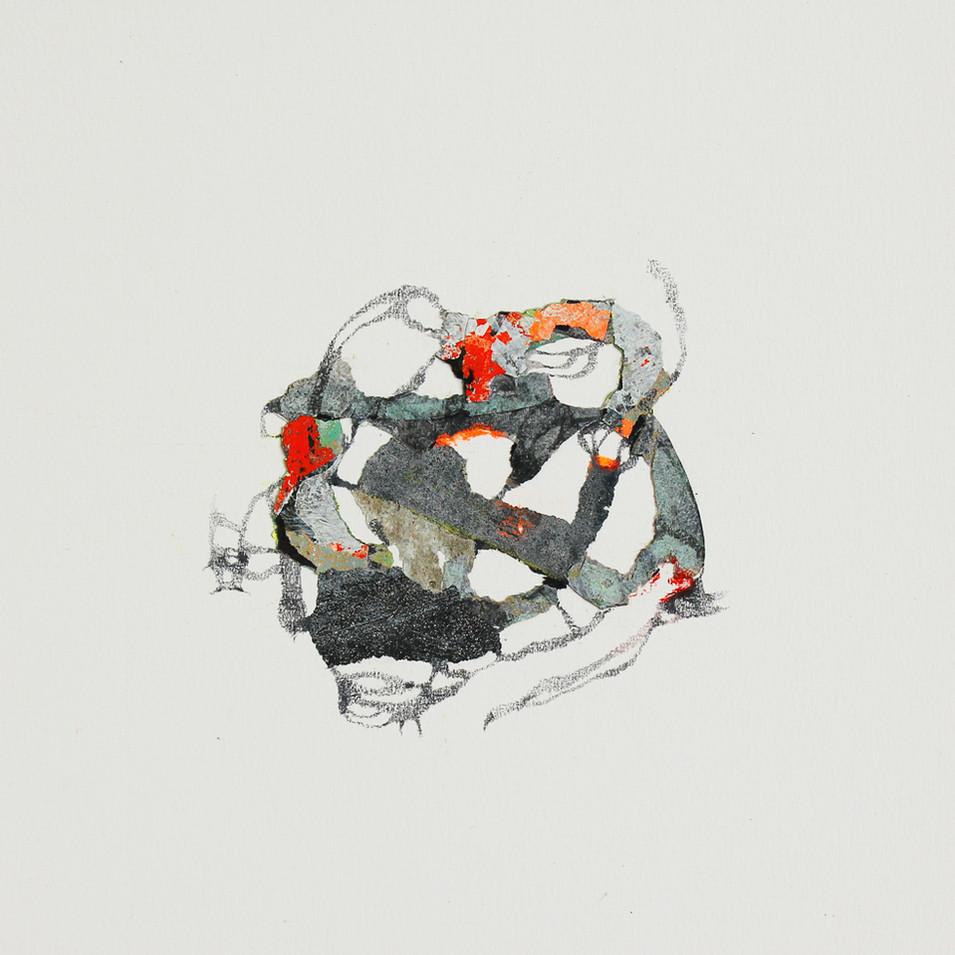 lichen 6.jpg