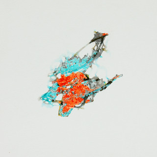 lichen 2.jpg