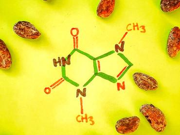 Inside cacao: the godly molecule Theobromine