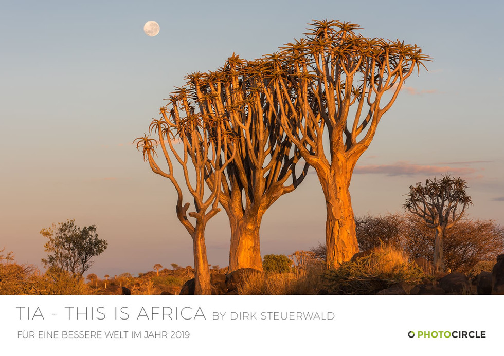 "KALENDER 2019 ""TIA - This is Africa"" bei Photocircle"