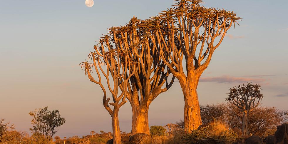 Namibia Fotoreise 2021