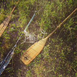 Paddles in the Grass
