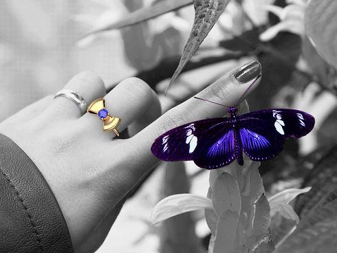 Bague-Butterfly-noir-et-blanc-et-couleur