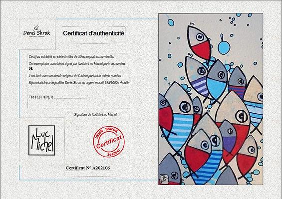 Capture certificat luc Michel.JPG