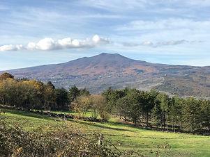 Monte Amiata.jpeg