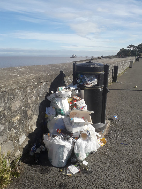 Litter in Clevedon.jpg