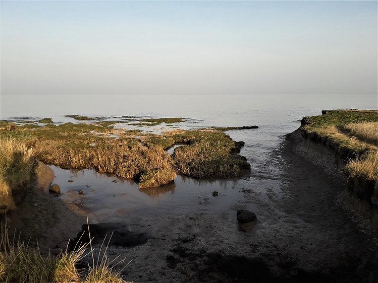 Clevedon Sea Wall Tide, March, 20.jpg